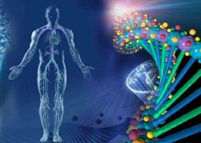 Šta je kvantna analiza